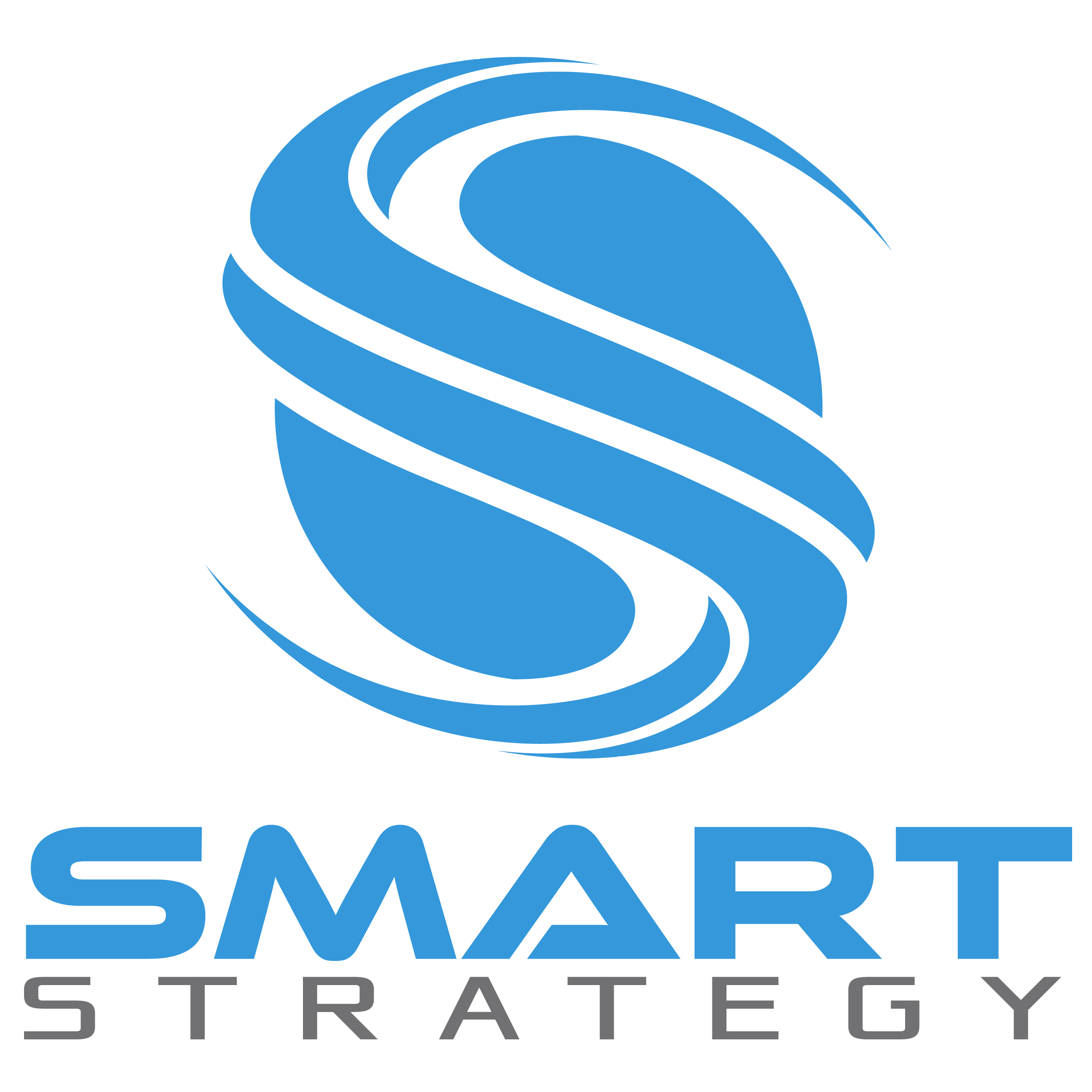 Visit the partner detail page for Smart Strategy