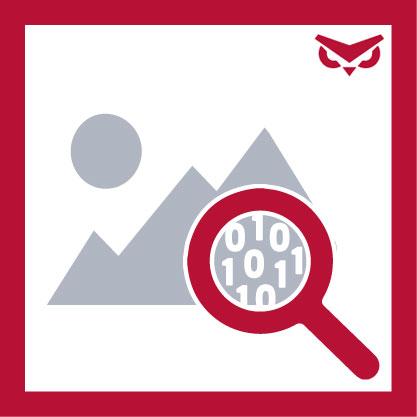 Image Mapper App Logo
